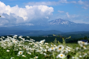 Hokkaidou2